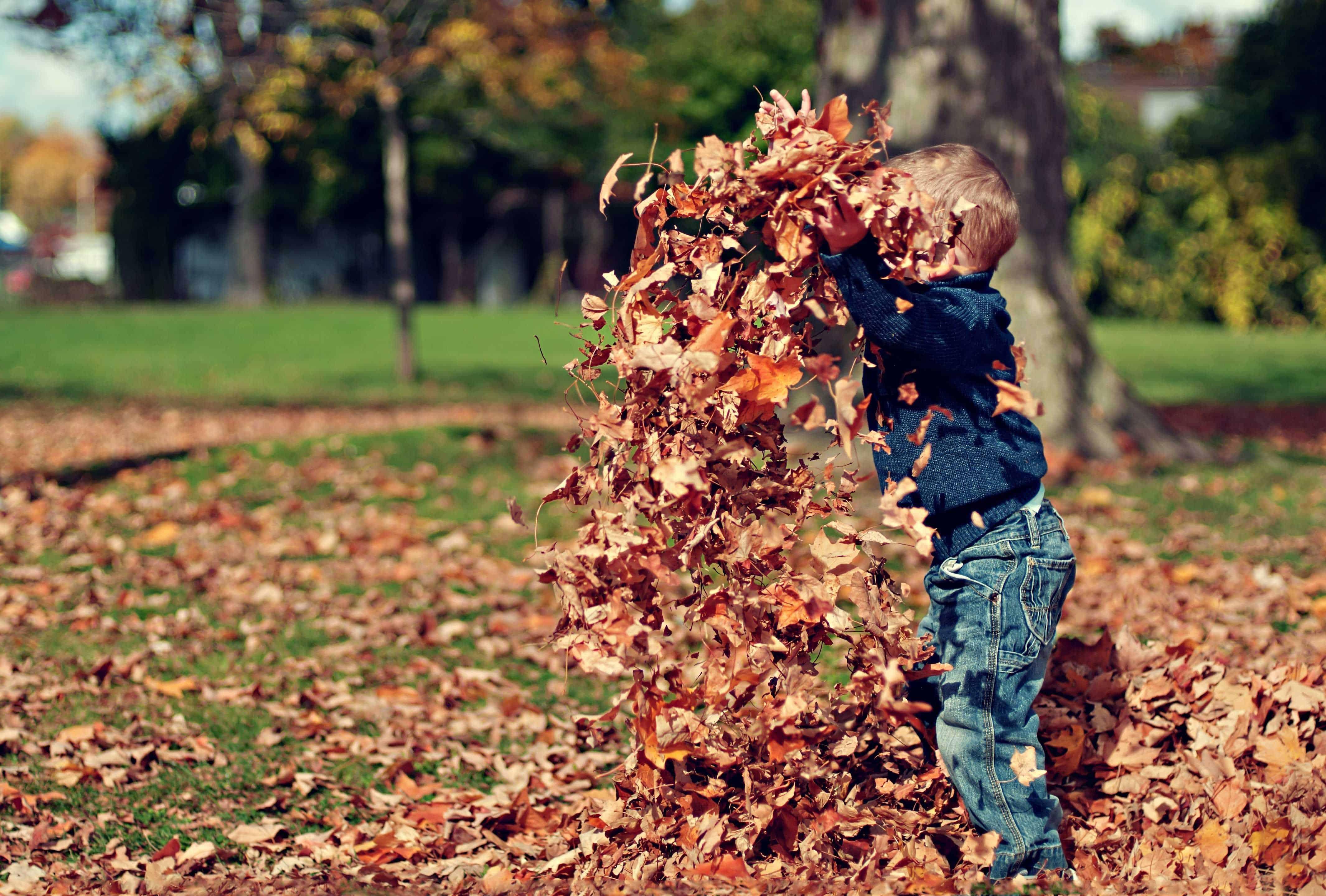 Achtsamkeit hilft Kindern bei der Lösung von Konflikten